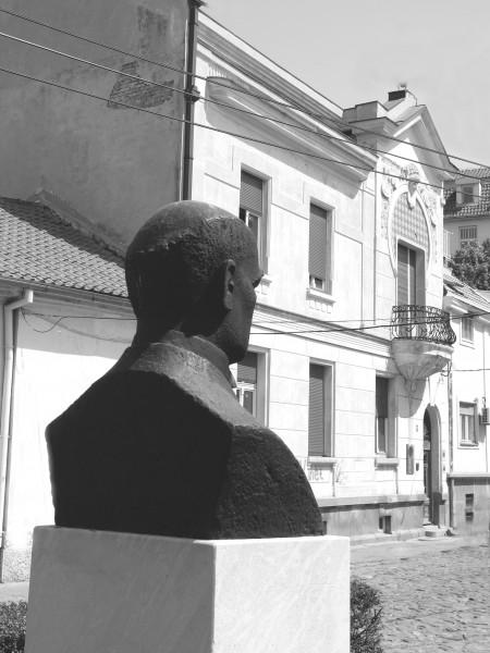 Kuca i bista Mihaila Petrovica Alasa